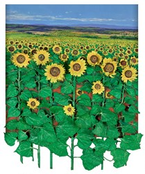 Girasoles by Ramon Vila - Original Painting on Board sized 35x44 inches. Available from Whitewall Galleries